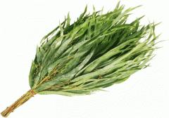 Bath eucalyptus broom