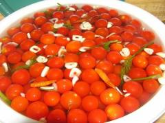 Tomatoes fermented