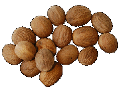 Nutmeg integral (ABCD). Spices in assortmen