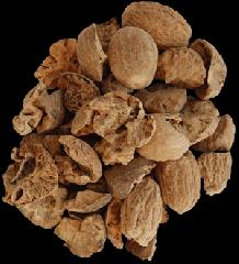 Nutmeg chipped (BWP)