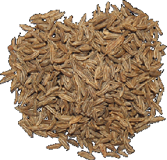 Caraway seeds. Spicery in assortmen