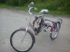 Tricycle adult Comfor