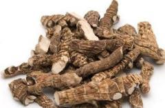 Acorus, root, 100 g