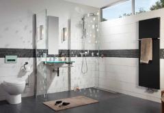 Shower channel ACO Shower Drain 785 + lattice