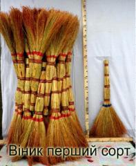 Sorghum broom first grade