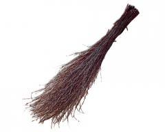 Broom birch 1 grade