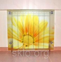 Radiator decor from safety glass