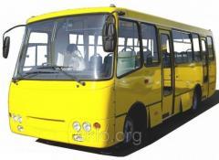 Rear, side screen for PAZs, Bogdan, Elalon buses