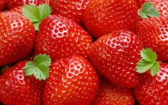 Organic strawberries from 50kg