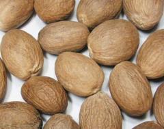 ABCD nutmeg