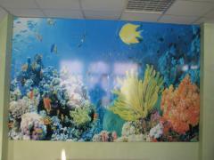 Натяжные стены Сарос Дизайн КИЕВ