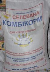 Комбикорм для несушки (1-18) Селевана