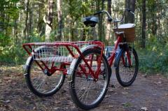 Ricycle for pozhily people