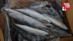 Makrela japońska