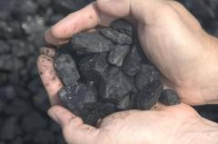I will sell coal