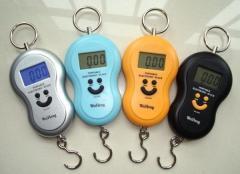 Kanter electronic 40kg/10gr