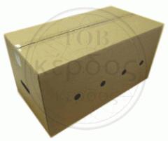 Cardboard food packing