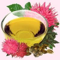 The hydrogenated castor oil (PEG-40)