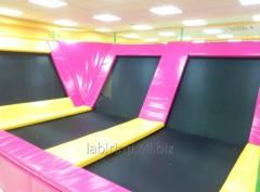 Trampolines gymnastic and accessories to them