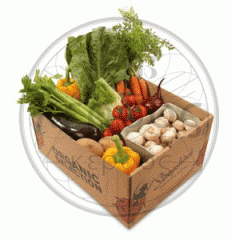 Gofrolotki for vegetables