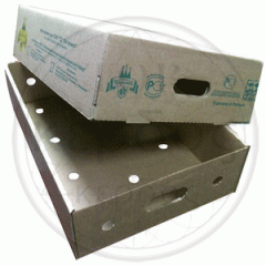Boxes for fish and frozen products