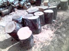 Firewood on spill, pellets, coal
