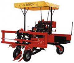 The combine for cleaning of onions and garlic