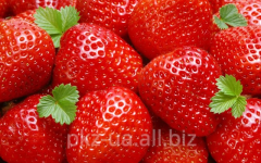 Syrup Strawberry of 100% natural (without dyes and