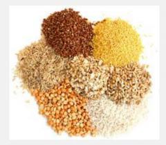 Зерновые культуры продажа и закупка