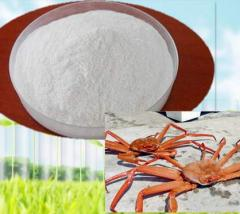 Chitosan food