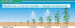 Гумат калия на кукурузу БЕСПЛАТНАЯ ДОСТАВКА