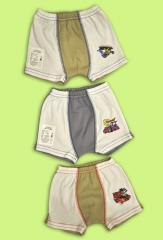 Boxer shorts for the boy Artikul 236-20
