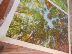 Photo printing bottom view