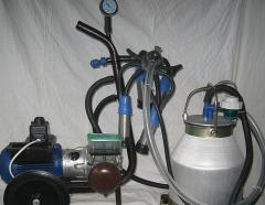 Device of individual milking AID-1-01