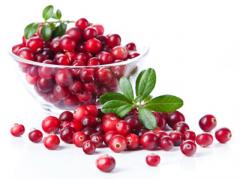 Syrup the Cranberry of 100% natural (without dyes
