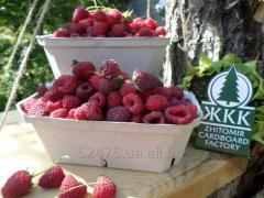 Контейнер для ягод, фруктов, овощей, грибов (500 г)