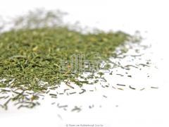 Parsley leaves dried
