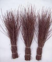 The broom is birch