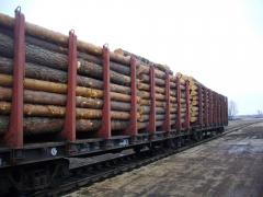 Кругляк Сосна, Pine Log, CPT Odessa 79$