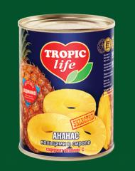 Pineapple rings in syrup 580 ml (X12)  Tropic Life
