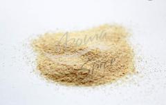 Garlic dried 40х60. Seasonings, spices, spicery in