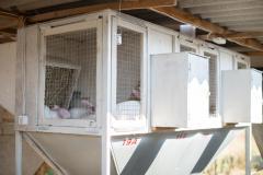 Клетки для племенных кроликов, фермы для кроликов,