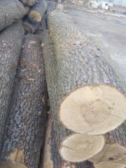 The wood - a round timber an oak