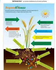 Body - mineral fertilizer with the antioxidant and