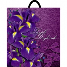 Bag with the plastic handle 400*480 Irises (10