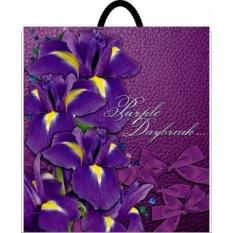 Bag with the plastic handle 400*480 Irises (10