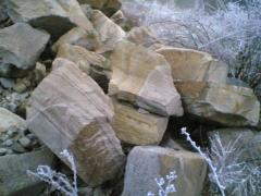 Stone boulder (kvartsitopeschanik)