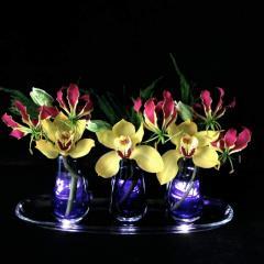Глориоза и орхидея