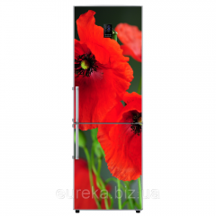Vinyl stickers on the refrigerator Poppies