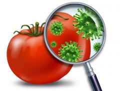 Пестициды оптом